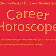 career-report